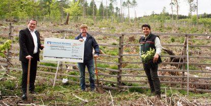 Volksbank Marsberg unterstützt Baumpflanzungen der Richard-Hesse-Stiftung