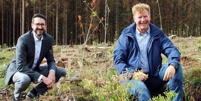 Nachhaltige Projekte in der Region: Wiederaufforstung in Büren, Bad Wünnenberg und Salzkotten
